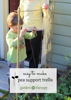 This simple project is fun for the whole family. Make a pea trellis to support and train pea plants as they grow, and keep them at perfect snacking height!