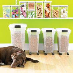 Pet Food Storage Container Dog Food Bin Cat Container With A Scoop