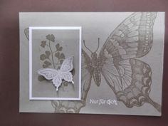 Stampin up Sets : Swallowtail, Papaya Collage, Best of Butterflies,