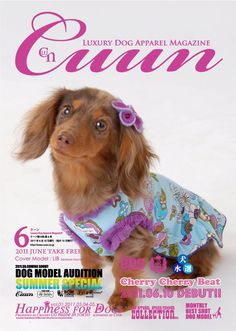 Cuun -Luxury Dog Apparel Magazine- 2011