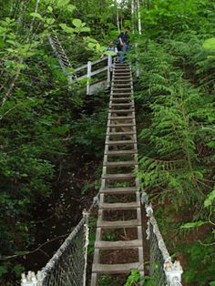 The West Coast Trail is a world-renowned hiking trail along Vancouver Island's beautiful west coast. It was built in 1907 as a life-saving trail in response to the many ships wrecked along its rugged coast. Today it is a part of Pacific Rim National Park.