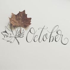 october, autumn, and fall image Hello October, Happy October, Happy Fall Y'all, October Fall, September Ends, October Born, Autumn Day, Hello Autumn, Autumn Leaves