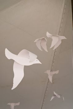 how to make an origami seagull