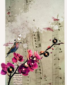 Music notes, so pretty :) Maya, Kinds Of Music, My Music, Music Bird, Music Notes Art, Sheet Music Art, Cage Tattoos, Music Lovers, Musicals