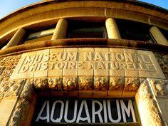 la villa aquarium Bric-à-Brac