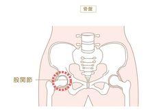 寝ながら股関節を柔軟にストレッチすると下半身デブダイエットに効果があるという股関節ストレッチ。 下半身痩せたい…