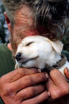 This Homeless Man Hid His Face In His Puppy Because He Was Too Embarrassed To…