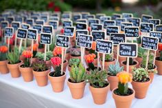 Sweeeeet succulents with tiny chalk boards, photo by Ashleightaylorphotography.com