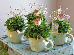 Flower Decorations, Table Decorations, Floral Centerpieces, Amazing Flowers, Trellis, Indoor, Terrariums, Bliss, Gardens