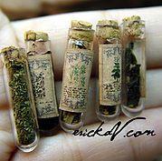 miniature herb jars | illustration