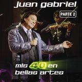 Mis 40 en Bellas Artes: En Vivo Desde Bellas Artes, México 2013 [CD]
