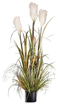 Artificial 47 in Reed Grass w White Flowers  Black Pot  Reed Banks Product SKU HD222559 -- This is an Amazon Affiliate link. Be sure to check out this awesome product.