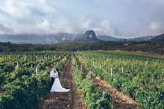 фотосессия виноградники Крыма