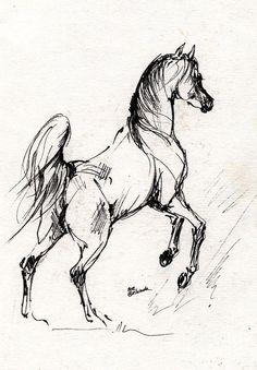 Horse Sketch 30 07 2013 Drawing by Angel  Tarantella