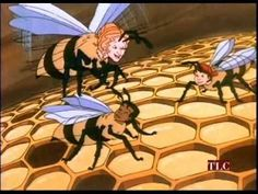 They Were Strong and Good/ The Bee Tree -  Magic School Bus In A Beehive - YouTube