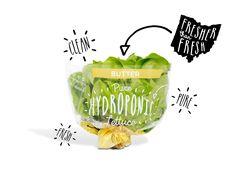 lettuce packaging - Google Search