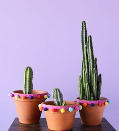 A Pom Poms Diy with Terra-cotta Pots. A Pom Poms Diy with Terra-cotta Pots. Painted Flower Pots, Painted Pots, Cactus Pot, Pot Plante, House Plants Decor, Cactus Y Suculentas, Diy Arts And Crafts, Cacti And Succulents, Diy For Kids