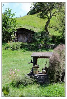 Hobbit house and well