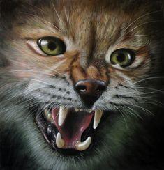 Fox, Pastel, Animals, Cake, Animales, Animaux, Animal, Animais, Foxes