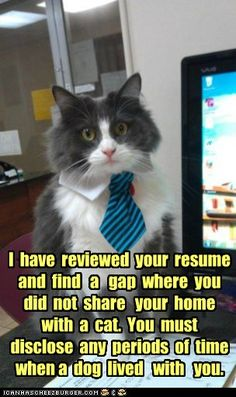 I have reviewed your resume....