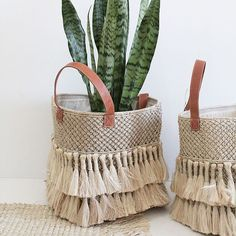 they are the perfect size for toys, magazines, laundry or a pot holder for your favorite plant! Shop Online & Instore now or [Shop Insta in Bio] Tx Bohemian House, Wicker Baskets, Cane Bask Rope Basket, Basket Bag, Basket Weaving, Cane Baskets, Wicker Baskets, Boho Diy, Boho Decor, Diy And Crafts, Kids Crafts
