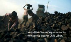 What is the relationship between child labor and product certification? Is certification a guarantee of child labor free product? Read an article about product labels ensuring child labor prevention in craft industry: http://www.theguardian.com/global-development/2013/aug/15/child-labour-product-certification  Spread by www.compassionateessentials.com and http://stores.ebay.com/fairtrademarketplace/
