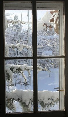 I Love Winter, Winter Magic, Looking Out The Window, Winter Scenery, Snowy Day, Window View, Snow Scenes, Winter Beauty, Winter Pictures