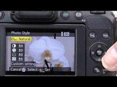 Panasonic Lumix FZ200 mini series- Getting Better Images Part 1 Bright Sunshine - YouTube