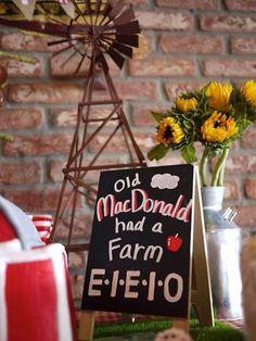 Old McDonald Farm themed birthday party