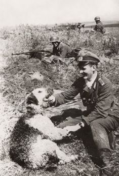 Airedale Terrier w Soldier WWll, 1943 War History, Airedale Foto, Ww2 Warriors, War Ll, War Animal, War Ii, Axi Wwii, Airedale Terrier, War Dogs .
