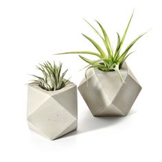 Cuboctahedron Concrete Air Plant Holder, Minimalist Geometric Concrete Tillansia Holder, modern gift, indoor garden beton decor, hand cast