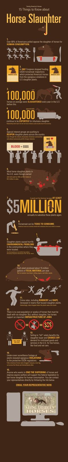 This is one of the most important and knowledgeable infographics I've ever read. Please take the time to read this and help END HORSE SLAUGHTERING FOREVER!