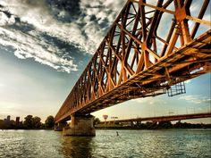 Showcase of Beautiful Bridge Photography