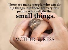 There are many people who can do big things, but there are very few people who will do the small things.