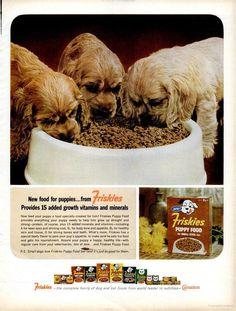 Friskies Puppy Food (1964)