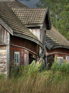 Vuosien paino harteillaan - ue urban exploration maa seutu talo tila piha rakennus talli navetta vanha hirsi autio hylätty notko syyskuu sy...