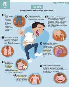 3 minutes de rire ont le même effet que 30 minutes de relaxation... Rions et relaxons nous !  https://www.facebook.com/3-kifs-par-jour-185241738175511/