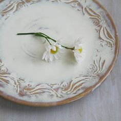 Plate in White Rustic Glaze Handmade Pottery Dish Ceramic Stoneware Ready to Ship Made in USA
