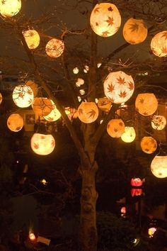small lanterns with leaf patterns hung from a tree...