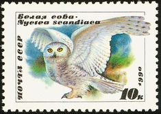 Zaco's Owls: Russian Owl Stamps