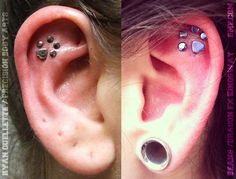 pawprint-piercings. I want this! Even though I know how much that would hurt...lol