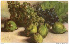 Belle illustrée signée Carlo CHIOSTRI ( RARE )  figues et raisins