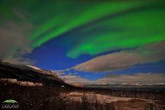Auroras - Abisko National Park, Sweden