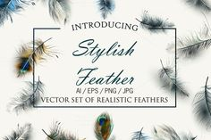 Vector realistic feathers set by FleurArt on @creativemarket. Download now or sync to Dropbox.