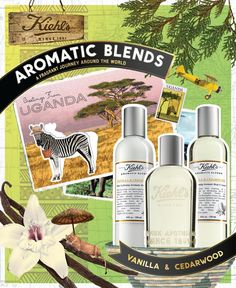Our #Kiehls #AromaticBlends Vanilla & Cedarwood, complete with a fragrance, skin–softening body cleanser and lotion, is inspired by the dense jungles of Uganda.