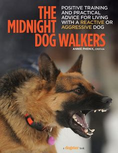 """We Talk to Trainer Annie Phenix About Her New Book, 'The Midnight Dog Walkers'   Dogster   """"Her easy-to-use guide teaches pet parents of reactive or aggressive dogs how to use positive reinforcement training."""" Click to read and share the full article for some very useful information."""