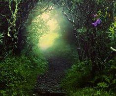 ....the forgotten path