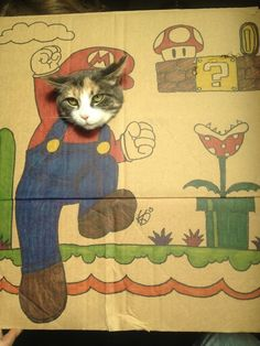 Funny Pictures Of Cats In Silly Cardboard Cutout Costumes - DesignTAXI.com