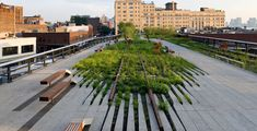 The High Line, Section 1 in New York City - design won the Honor Award for 2010.  A must see when I next visit New York.