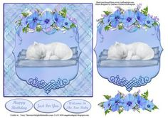 White Baby Kitten Blue Card Topper Decoupage on Craftsuprint designed by Barbara Hiebert - This is a very cute sleeping baby Kitten,on a blue blanket , and a blue background,with a blue decoupage plack and flowers.The sentiment tags sayHappy birthdayJust For YouWelcome To the New Baby - Now available for download!